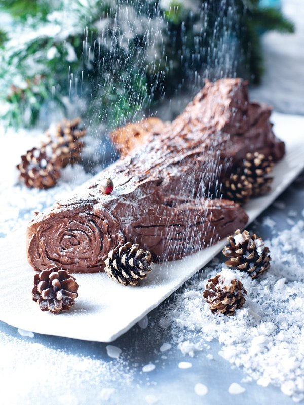 Christmas Yule Log Cake.Yule Log